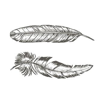 Conjunto de penas à mão desenhar esboço modelo de tatuagem na moda boho ou estilo étnico.
