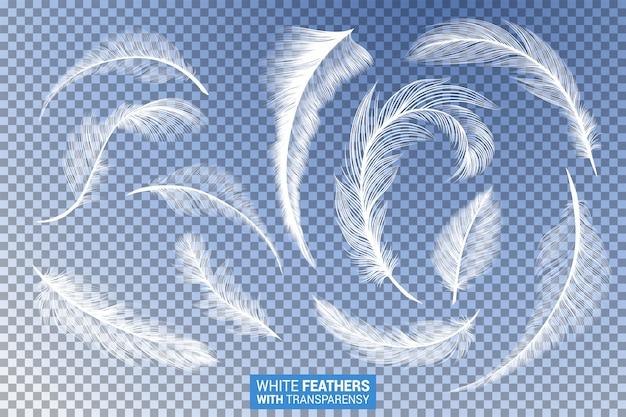 Conjunto de penas brancas macias efeito transparente realista