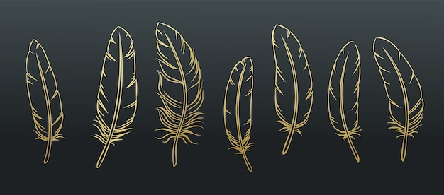 Conjunto de penas de contorno. pena de pássaro dourada sobre fundo preto.