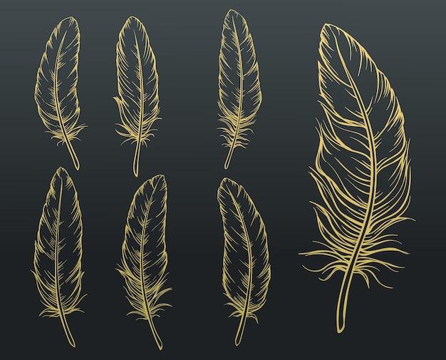 Conjunto de penas de esboço. pena de pássaro desenhada à mão dourada