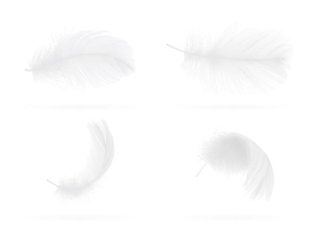 Conjunto de penas de pássaro brancas caindo sobre fundo branco
