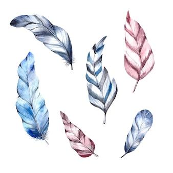 Conjunto de penas de pássaros desenhadas à mão e isoladas