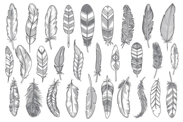 Conjunto de penas desenhadas à mão