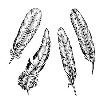 Conjunto de penas, desenho de mão, esboço boho ou estilo étnico.