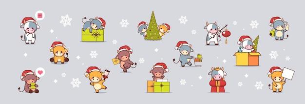 Conjunto de pequenos bois com chapéus de papai noel feliz ano novo saudando vacas fofas mascote personagens de desenhos animados coleção ilustração de corpo inteiro