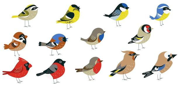 Conjunto de pequenos pássaros decorativos da floresta