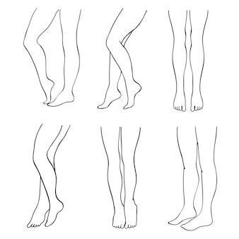 Conjunto de pernas femininas atraentes de contorno