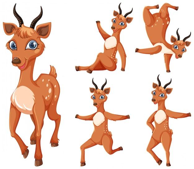 Conjunto de personagem de desenho animado de gazela
