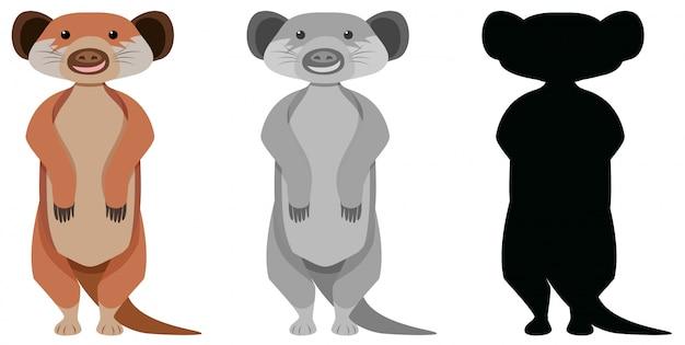 Conjunto de personagem de desenho animado meerkat