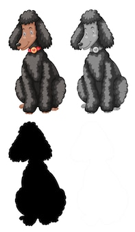 Conjunto de personagem de poodle