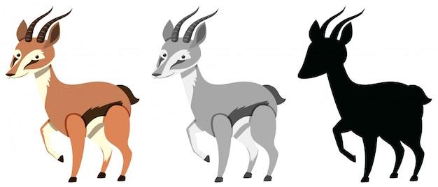 Conjunto de personagem gazela