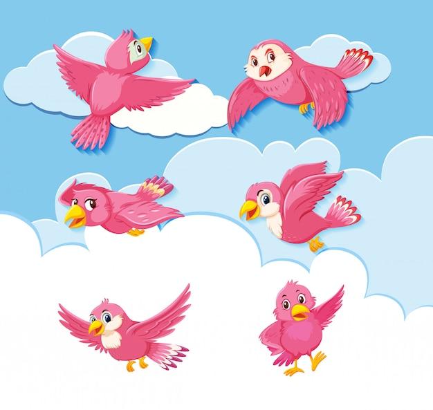 Conjunto de personagens de pássaros no fundo do céu
