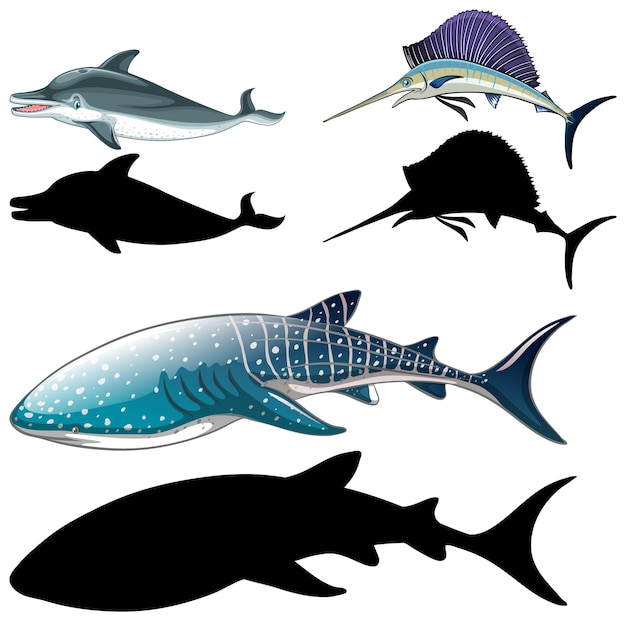 Conjunto de personagens de peixes e sua silhueta em fundo branco