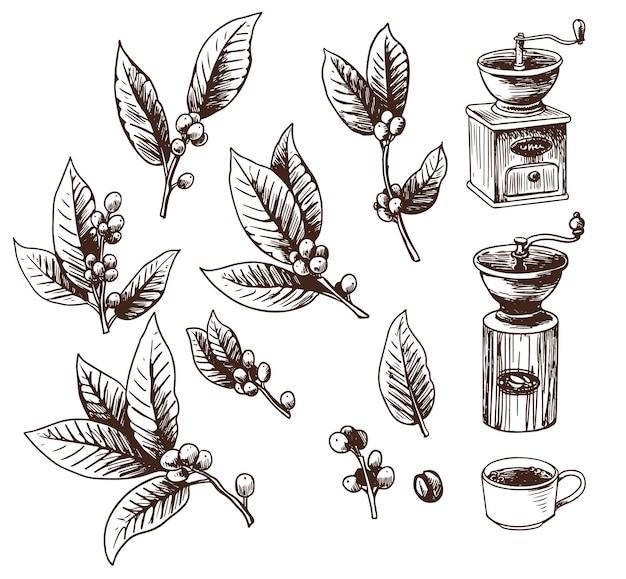Conjunto de pés de café, moinho de café e xícara