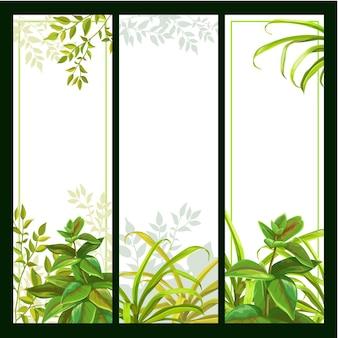 Conjunto de plano de fundo do banner com plantas tropicais.