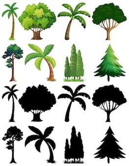Conjunto de planta e árvore com sua silhueta