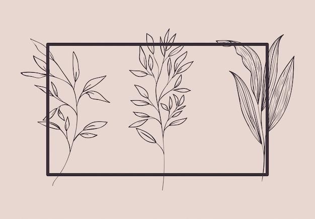 Conjunto de plantas botânicas desenhadas