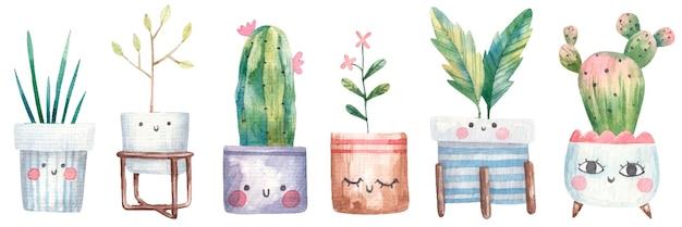 Conjunto de plantas caseiras, suculentas, monstera, cactos em vasos de flores com olhos
