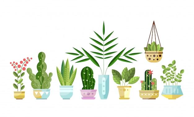 Conjunto de plantas de estilo plano colorido em vasos em pé na fila. plantas decorativas para casa.