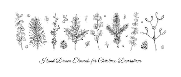 Conjunto de plantas de natal desenhadas à mão