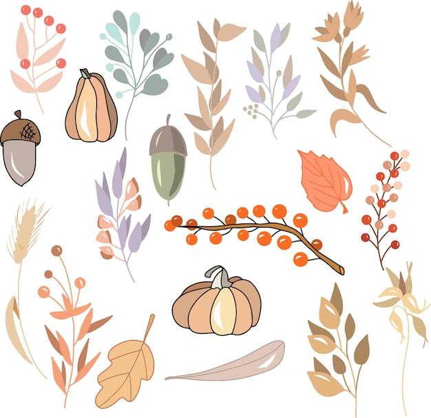 Conjunto de plantas de outono