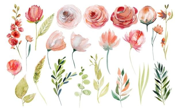 Conjunto de plantas de verão em aquarela, rosas cor de rosa e brancas e flores silvestres, ramos verdes