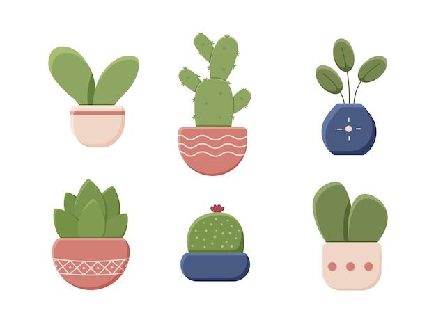 Conjunto de plantas decorativas em vasos isolados no fundo branco