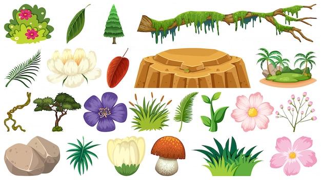 Conjunto de plantas dos desenhos animados
