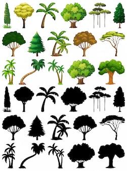 Conjunto de plantas e árvores com sua silhueta