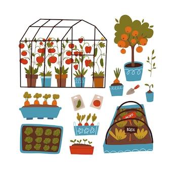 Conjunto de plantas e cenas de estufa, vasos e prateleiras com sementes de plantas e brotos de jardinagem