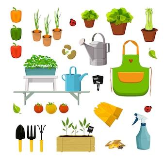 Conjunto de plantas e ferramentas de jardim