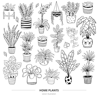 Conjunto de plantas e flores desenhadas à mão