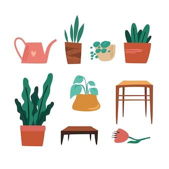 Conjunto de plantas em casa