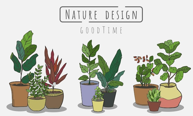 Conjunto de plantas em vasos com jardim paisagístico interno e externo