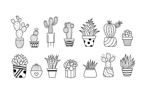 Conjunto de plantas em vasos, ilustração vetorial de plantas caseiras