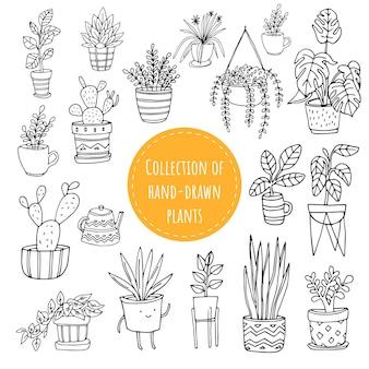 Conjunto de plantas engraçadas desenhadas à mão em vasos