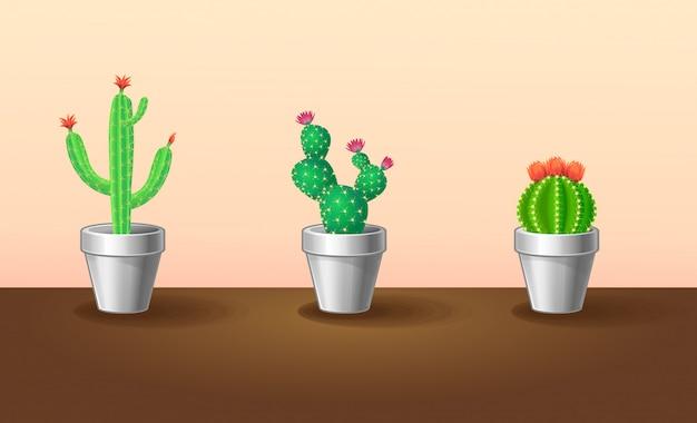 Conjunto de plantas exóticas decorativas