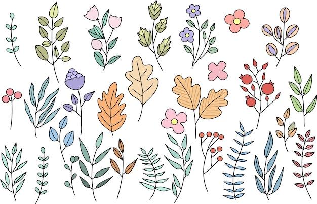 Conjunto de plantas pintadas à mão