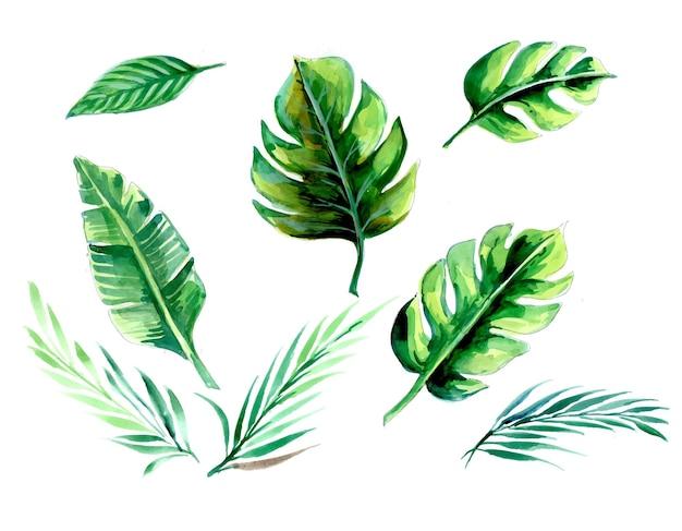 Conjunto de plantas tropicais em aquarela desenhada à mão