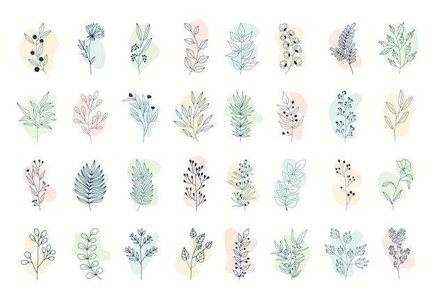 Conjunto de plantas tropicais, folhas e galhos com flores. estilo desenhado à mão.
