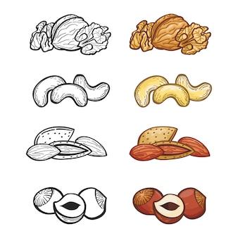 Conjunto de porca de esboço. ilustração do grupo de nozes