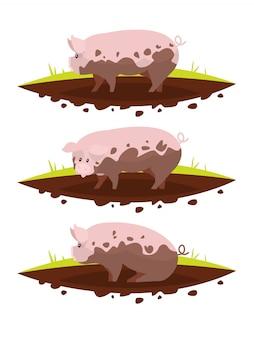 Conjunto de porco em uma poça de lama.