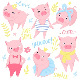 Conjunto de porcos rosa fofo