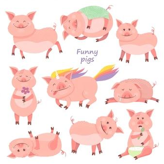 Conjunto de porquinho engraçado