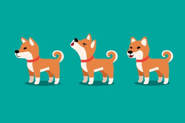 Conjunto de poses de cachorro bonito shiba inu de personagem de desenho de vetor