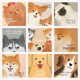 Conjunto de postagens de mídia social para modelo de dia internacional do cachorro