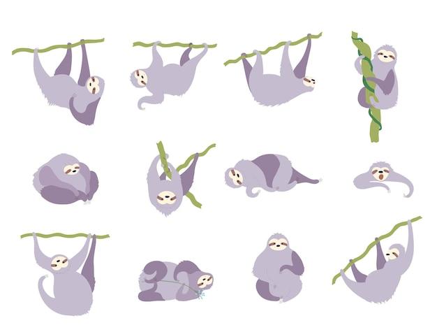 Conjunto de preguiça de personagem fofo. bebê isolado dos desenhos animados escalada ilustração em vetor plana preguiças.
