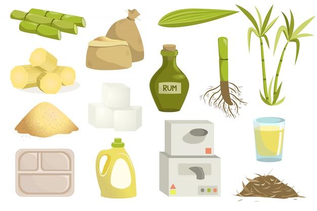 Conjunto de produção de cana-de-açúcar