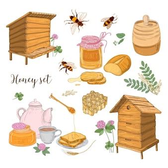 Conjunto de produção de mel, apicultura ou apicultura - favo de mel, colmeias artificiais, concha de madeira, abelhas, bule de chá desenhado à mão em estilo retro em fundo branco. ilustração colorida do vetor.