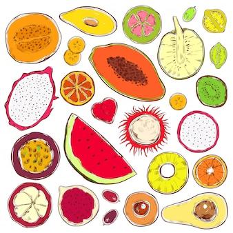 Conjunto de produtos exóticos coloridos desenhados à mão